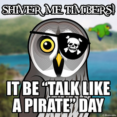 Talk Like a Pirate Day (birdorable) Tags: holiday cute bird funny humor greatgreyowl meme owl shivermetimbers talklikeapirate birdorable