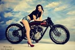 Harley Rodeur (Reografie) Tags: harley harleydavidson motor davidson rodeur nibbie reografie