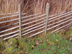 Old fence (Anja Jonsson) Tags: autumn fence grdesgrd