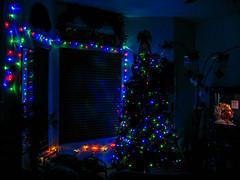 Oh Christmas Tree! (Lady Pandacat) Tags: christmas tree christmaslights 2012 canong9 tinaangel ladypandacat