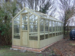 Swallow Kingfisher (6'8 x 16'9) Wooden Greenhouse (greenhouses uk) Tags: greenhouse kingfisher swallow 6x16
