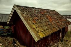 Boathouse (Bozze) Tags: sweden boathouse archipelago donsö sjöbod wwwoppnahorisonterse wwwopenhorizonsfinearteu wwwdonsobilderse