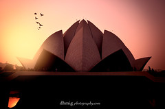 Lotus Temple, New Delhi (dhmig) Tags: sunset india building birds architecture temple delhi religion attraction newdelhi lotustemple allreligions famousbuilding bahhouseofworship famousattraction architecturalaward