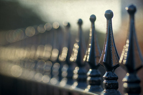 Fence fades into bokeh.