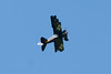 CT541 RC Fokker Dr.I (listentoreason) Tags: sky usa america canon newjersey model unitedstates scenic favorites places scalemodel rcairplane ef28135mmf3556isusm score25 northbranchpark radiocontrolledmodel