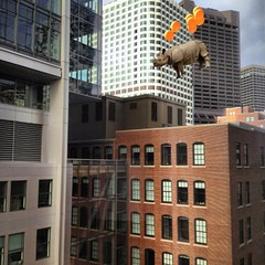 city girl (Janine Graf) Tags: cameraphone city travel orange silly 6x6 boston balloons ma downtown surreal adventure financialdistrict rhino mobilephone artrage whimsical whiterhinoceros bigphoto worldtraveler juxtaposer janine1968 iphone4s janinegraf