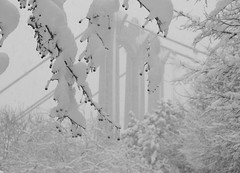First big snowfall of the season (minnepixel) Tags: snowflake street city bridge winter urban blackandwhite white snow storm cold ice water weather minnesota canon river mississippi fun snowflakes blackwhite downtown december photographer berries snowstorm freezing minneapolis flake mpls firstsnow avenue snowfall mn riverwalk hennepin winterwonderland 2012 g11 firstsnowfall downbytheriver hennepinavenue firstsnowoftheseason mnsnow canonpowershotg11 canong11 mnweather