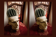 spike (Richard burtle) Tags: pricks prick needle spikes spiked sharp plantpot ceramic face head cactus pottery stereo stereopair pothead 3d