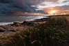 The Other Side (Tony N.) Tags: france paysdeloire plage beach sunset coucherdesoleil sea mer atlantique nuages clouds sun soleil rays rayons d810 nikkor1635f4 tonyn tonynunkovics vendée sauzaie