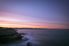 Eat your greens (Timothy M Roberts) Tags: d810 tamron maroubra sydney australia sunset buonasera