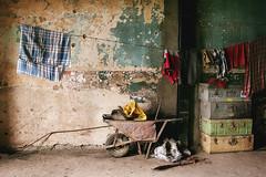 Those who moved on (georgerani532) Tags: composition interior indoor colour trunks abandoned urbex urbandecay wheelnarrow naturallight mumbai india