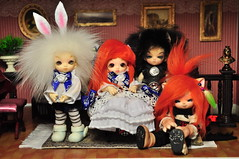 DSC_1894 (Mista-Oro) Tags: fairyland pukipuki kanu dreaming lily nanuri madeline dollhouse