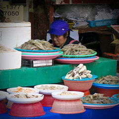 Vendor Head (Mondmann) Tags: jagalchifishmarket busan korea pusan southkorea rok republicofkorea asia easasia market traditionalmarket fishmarket vendor seller fishvendor merchant head fish shrimp mondmann canonpowershotg7x