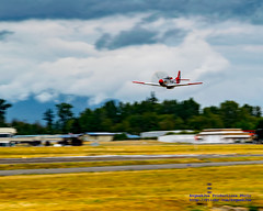 VAL-HALLA DOING A LOW APPROACH IN OVERCAST SKIES (AvgeekJoe) Tags: d5300 dslr hfm hfmp51dvalhalla heritageflightmuseum kbvs nikon nikond5300 northamericanp51 northamericanp51d northamericanp51dmustang other p51 p51mustang p51d p51dmustang propdisk propsandponies2015 skagitregionalairport valhalla warbirds aircraft airplane aviation warbird