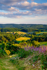 Albury sunset 2 (naddan28) Tags: albury landscape fujicolours velvia hdr newlandscorner surreyhills surrey fujifilm fuji
