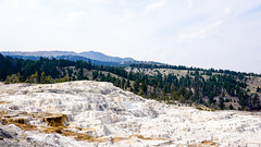 Mammoth Terraces (Billy K. Chen) Tags: yellowstonenationalpark yellowstone nationalpark nature naturephotography landscape wyoming idaho montana mountains hotspring terraces badlands mammothhotsprings