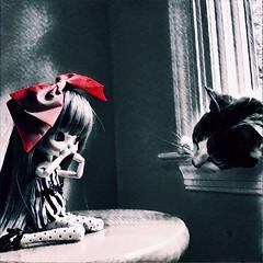 (Mina Mimosa) Tags: doll cat blackberry yeolume