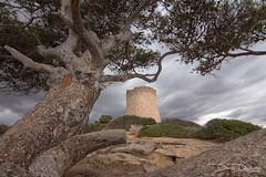 dany-durwael-de-5321 (dany.durwael) Tags: calapi mallorca turm klippe sturm dramatischerhimmel