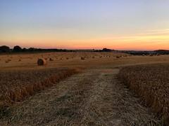 Hay Bales (Marc Sayce) Tags: sunset countryside gundleton hampshire fields bighton english farm sundown hay bales alresford summer autumn harvest