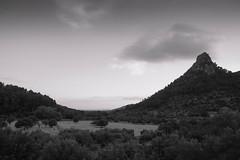Memories fade to dust (aniawagner) Tags: blackandwhite monochrome whiteandblack landscape countryside mountain mallorca spain soller hill trees valley nikon