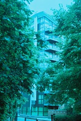 A view in the city (Papa Buah) Tags: trees london film architecture landscape perspective om10 dreamlike portra urbanlandscape streetwork