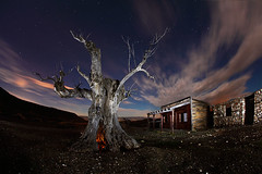Noche de Brujas (raul_lg) Tags: longexposure sky espaa west tree canon arbol noche spain nubes estrellas nocturna almeria oeste oldwest tabernas canon15mmfisheye viejooeste raullg ledlensert7 largaexposicion
