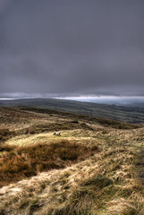 A lonely place (Raven Photography by Jenna Goodwin) Tags: trees sky jenna tree beautiful grass stone wall clouds landscape photography day colours cloudy district derbyshire sony peak dry alpha a200 raven hdr goodwin
