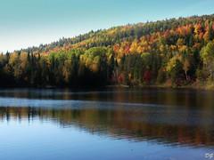 Bel automne (Amiela40) Tags: automne couleurs automn beaut