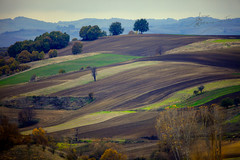 land layers (dtsortanidis) Tags: autumn brown green field yellow canon lens landscape photography colours earth mark greece ii 5d layers 100400mm dimitris dimitrios tsortanidis dtsortanidis