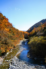 IMG_9655 (youkaine) Tags: november autumn red orange mountain yellow japan forest river waterfall hiking autumncolors foliage 日本 紅葉 秋 山 yamanashi 11月 川 ハイキング 山梨 nishizawakeikoku 葉っぱ 山梨県