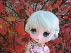 autumn skye
