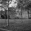 Rollei_369 (KKS_51) Tags: 6x6 rollei bäume fp4 höchst mainkai