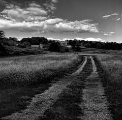 Untitled (louieliuva) Tags: blackwhitephotos