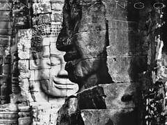 ' Bayon ' (Andy Zingo Photography) Tags: angkorwat angkor wat banyan