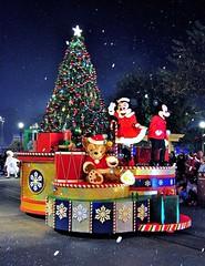 Magic Kingdom (wdwSteve) Tags: world christmas nikon magic sigma kingdom disney f28 d90 1750mm