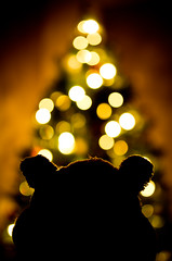 The Bokeh Tree (Humphrey Hippo) Tags: christmas xmas 35mm canon bokeh christmastree tokina humphrey 365 project365 canon7d tokinaatxm35prodx35mmf28macro