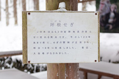 (GenJapan1986) Tags: travel winter snow japan   nagano   2012   nikond90