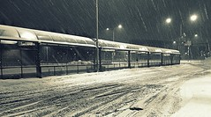 This was... week 50 (Kriisi) Tags: winter snow 52of2012 itkeskusbusterminal
