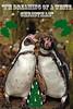 Season's Greetings ! (mark f2.9) Tags: christmas white penguins humboldt seasons singing wildlife humour greetings marwell blinkagain allofnatureswildlifelevel1 rememberthatmomentlevel1 me2youphotographylevel1 freedomtosoarlevel1birdphotosonly freedomtosoarlevel1birdsonly