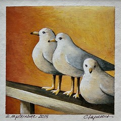 2 septembre 2015 - September 2, 2015 (marieclaprood) Tags: art illustration painting dailypainting marieclaprood claprood acrylic acrylicpainting birds seagulls orangebackground orange nature seabirds nearthesea resting