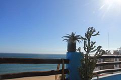 IMG_4174 (Sadhbh Kennedy) Tags: sky light tress outdoor roof rooftop morocco africa taghazout agadir travel traveling