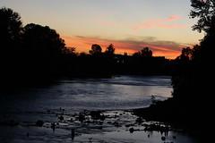 Dusk Over River Rock Sculptures (dsgetch) Tags: sunset willamette willametteriver silhouette rocksculptures rocksculpture