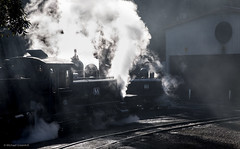 Belgrave Mornings (michaelgreenhill) Tags: pbr morning sunny silhouette winter australia belgrave steam trains 8a victoria 14a puffingbilly au