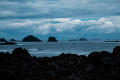 Vancouver island 61 (jfobranco) Tags: canada british columbia vancouver island tofino