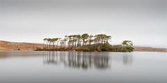 Pine Island, Derryclare (Owen O'Grady) Tags: connemana ireland pineisland longexposure landscapes lake le minimal minimalist owenogrady panoramas atouchofsilence galway subtle explore