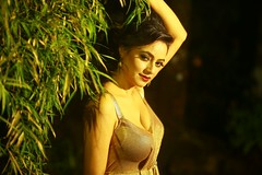 South actress Madhu Chanda Photos Set-2-Hot In Modern Dress (22)