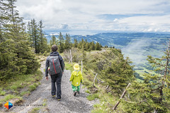 Bodensee views (HendrikMorkel) Tags: austria family sterreich bregenzerwald vorarlberg sonyrx100iv mountains alps alpen berge panoramawegbezau panoramawegbaumgartenbezau