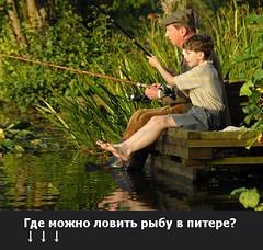 Где можно ловить рыбу в питере? (ГоcРыбнадзoр) Tags: rural garden sunset exposure the4elements baby golden