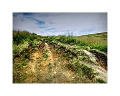 The Walkers Path (Missy Jussy) Tags: cromptonmoor moors earth fields grass shaw oldham landscape lancashire hills walkinglandscape rural countryside