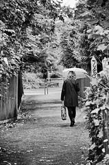Walking In The Rain. (curly42) Tags: walking rain umbrella pathway pedestrian